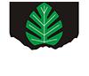 Logo All white